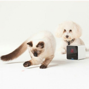 Petcube Camera The first gadget that allows pet owners to watch, talk to and play with their pets using a laser from their smartphone. AU$271.80