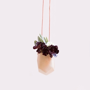 Hanging Vessel $30 - Hello Polly