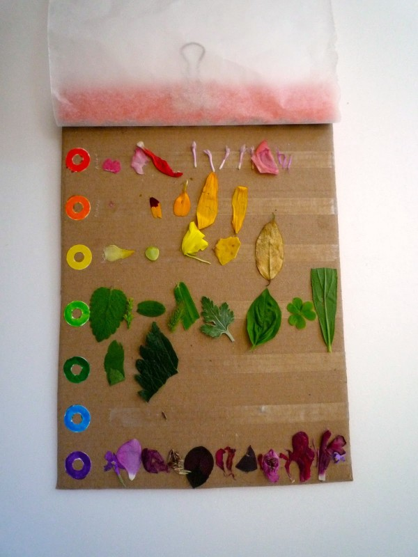 The best kids craft projects, via We-Are-Scout.com: rainbow nature collecting chart.