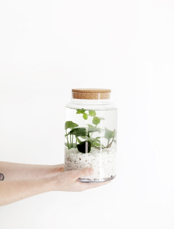 Clever craft ideas: DIY water garden by The Merrythought.