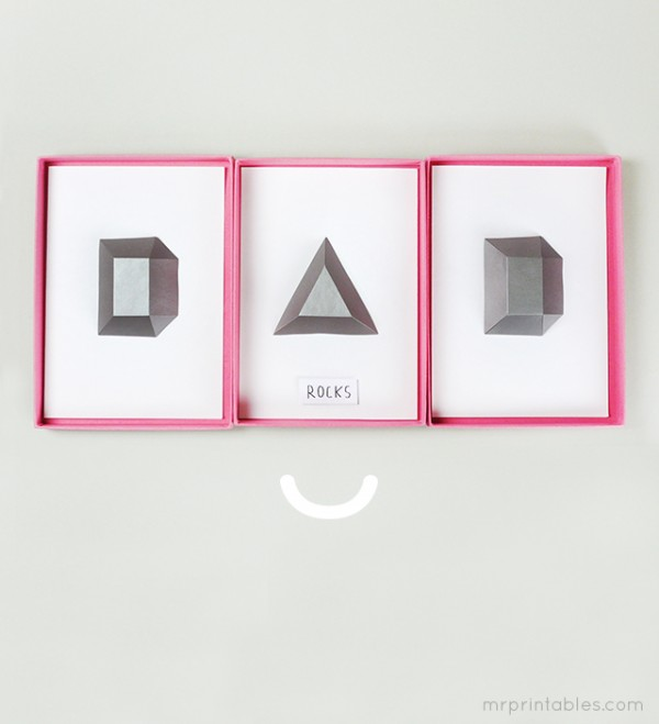 Dad Rocks DIY Father's Day Gift by Mr Printables.
