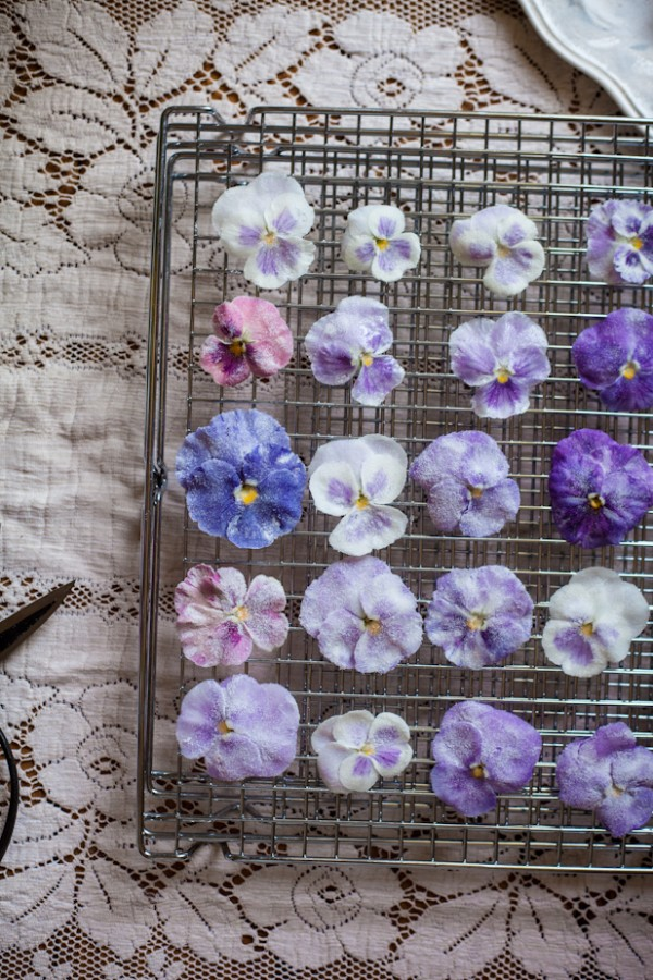 Candied Pansy & Viola Miniature Pavlovas by Adventures in Cooking.