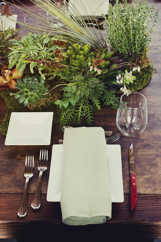 Use small containers to create living landscapes as table centerpieces. Lila B used moss, ferns, rosemary, and succulents to create a living green tablescape.